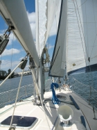 Caliber 35 Sailboat